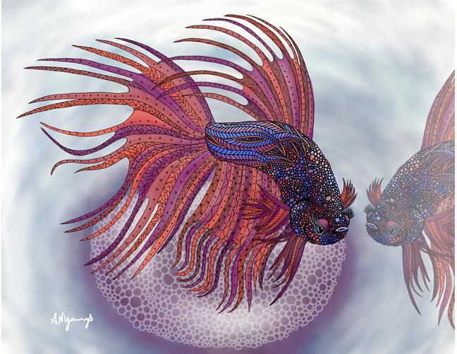 Betta Fish, A. Nicola