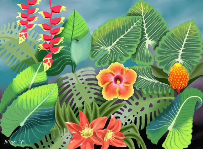 tropical plants, A. Nicola